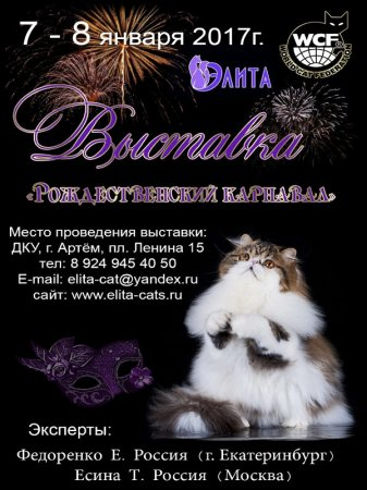 Выставка кошек «Рождественский карнавал» во Дворце Культуры Угольщиков г. Артема
