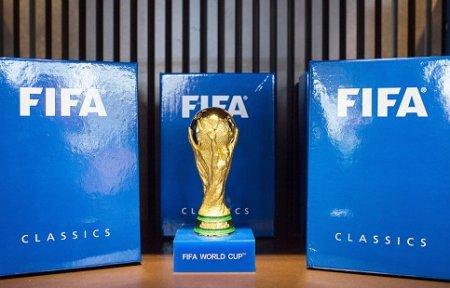 Кубок мира по футболу перед чемпионатом в России привезут во Владивосток — Мутко.