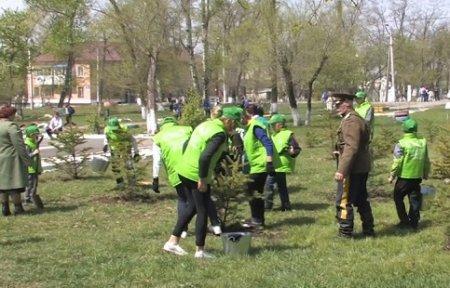 В Приморском крае создано первое в регионе школьное лесничество.
