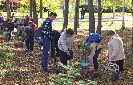 Всероссийская акция «Живи, лес!» в Приморском крае стартовала с Артема.