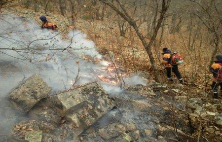 В Приморье продолжают бушевать 20 лесных пожаров.