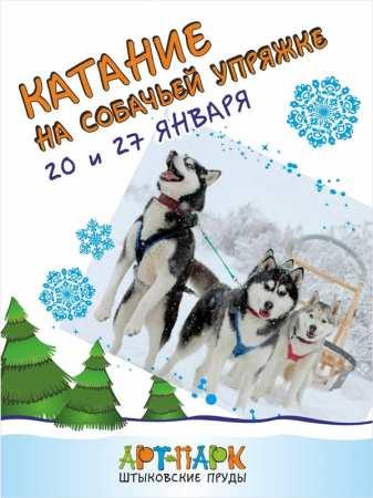 Катание на собачьих упряжках 20 и 27 января 2018