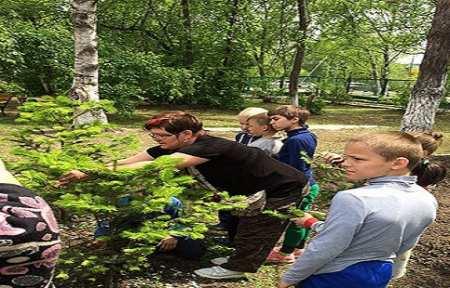 Сотрудники ЦЗЛ Приморского края провели открытый урок для учеников школьного лесничества.