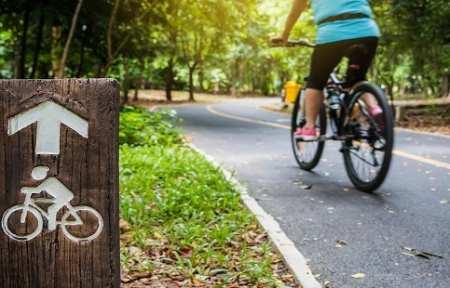 Власти Артема  объявили тендер на устройство велодорожки на территории взрослого парка.